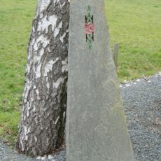 S 104 Felsen Serpentin 45x23x140cm